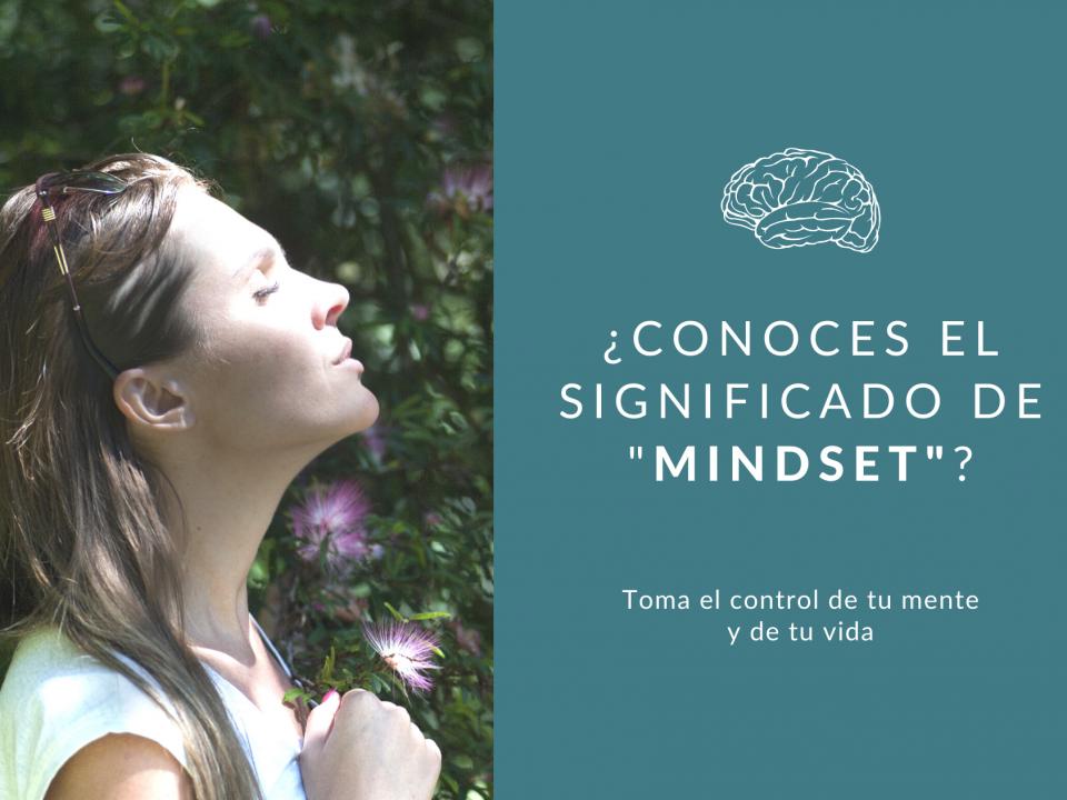 Descubre cuál es significado de mindset y cómo puedes programar tu mente para controlar tu vida.